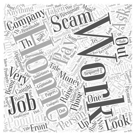 The Number One Work At Home Scam Explained word cloud concept Illustration