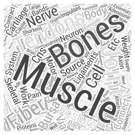 Hoe de skeletspieren veroorzaken rugpijn word cloud concept Stockfoto - 67301002