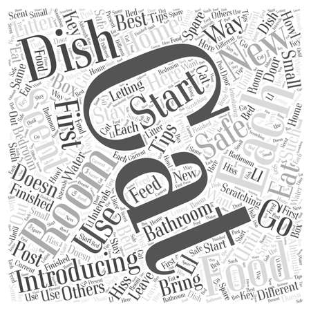 Tips For Introducing Cats word cloud concept