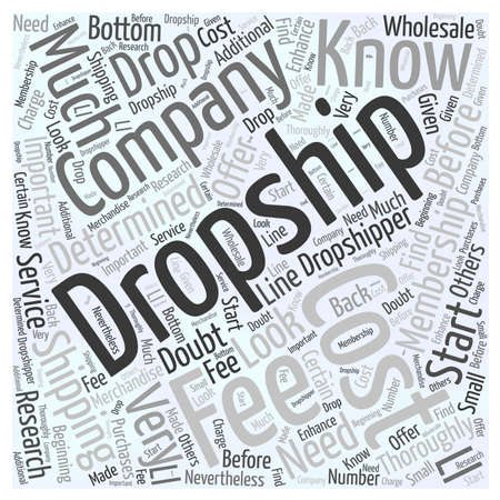 How much does Drop shipping cost word cloud concept