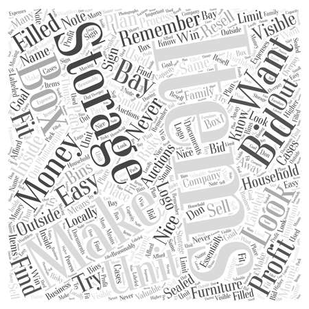 valuables: How to Make Money with Storage Unit Auctions word cloud concept Illustration