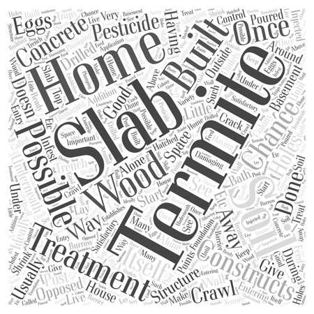 El tratamiento de termitas Losa concepto de nube de palabras Foto de archivo - 67486588