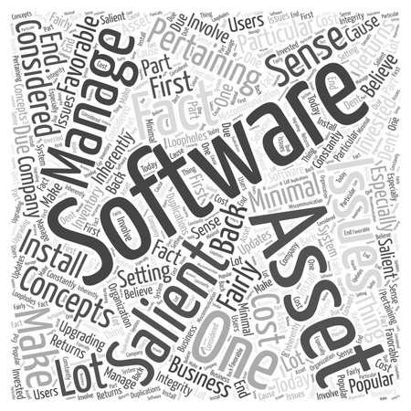 ソフトウェア資産管理の単語クラウド コンセプト  イラスト・ベクター素材
