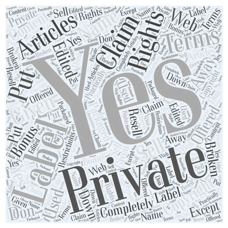 LICENCE TERMS word cloud concept