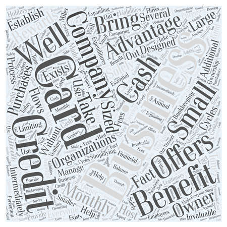 Take Advantage of Business Credit Card Offers word cloud concept Illustration