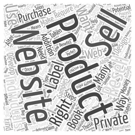private cloud: The Benefits to Creating Your Own Website to Resell Private Label Products word cloud concept
