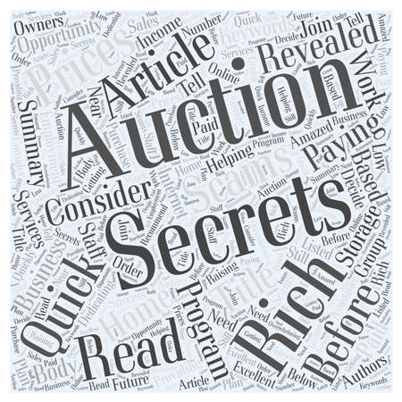 Storage Auction Secrets word cloud concept