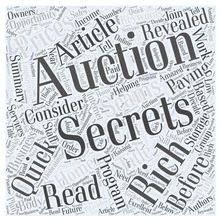 Storage Auction Secrets word cloud concept