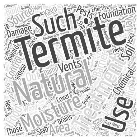 Natural concepto de la nube de tratamiento de termitas palabra Foto de archivo - 67582099