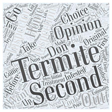 Inspección de termitas segunda opinión concepto de nube de palabras Foto de archivo - 67671161