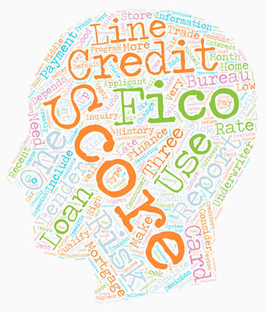 fico: You And Your FICO Score text background wordcloud concept