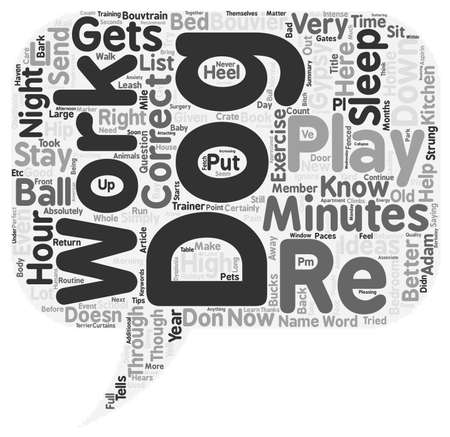 Your Dog Is Hyperactive When You Get Home From Work What Should You Do text background wordcloud concept Illustration