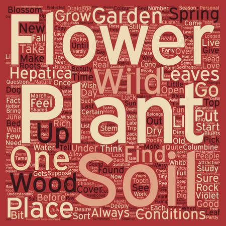 mend: WILD FLOWER GARDEN text background wordcloud concept Illustration