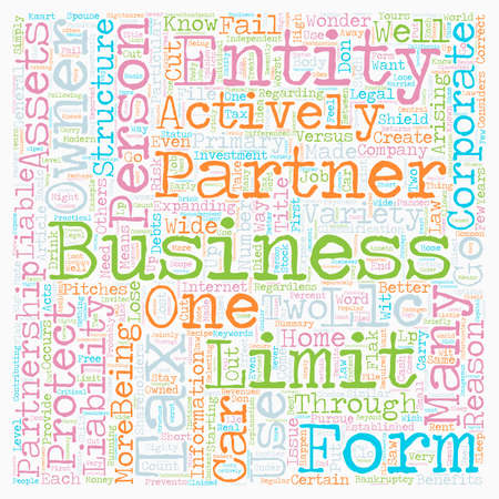 entity: Why You Need A Business Entity text background wordcloud concept