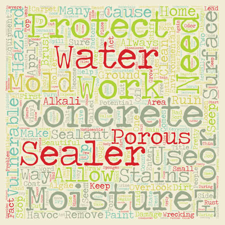 sealant: Protect Your Floors With A Concrete Sealant text background wordcloud concept Illustration