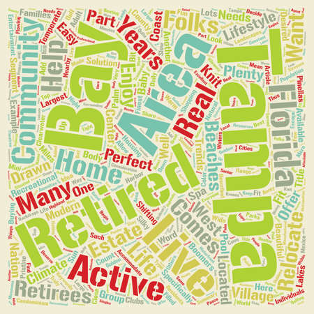 homes: Retirement Homes in Tampa Bay text background wordcloud concept