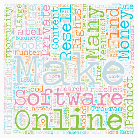 resell: Private Resell Rights What They Are and What They Mean text background wordcloud concept