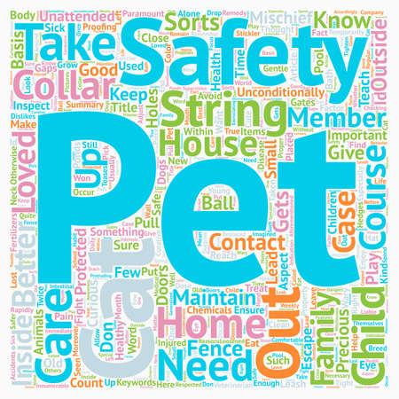 Pet Safety At Home a What You Should Know text background wordcloud concept Illustration