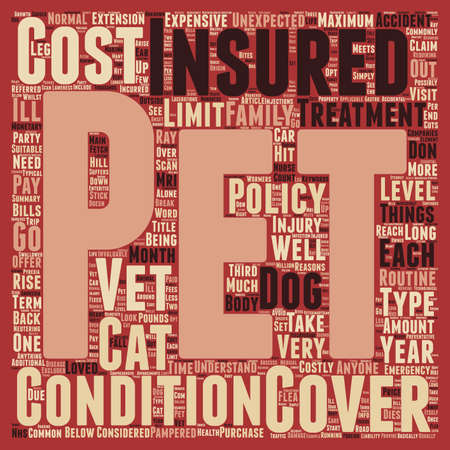 well loved: Pet Insurance have you got it text background wordcloud concept