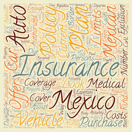 Mexican Insurance How To Choose A Plan text background wordcloud concept