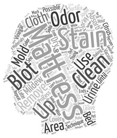 mattress: How to Clean Mattress Stains text background wordcloud concept Illustration