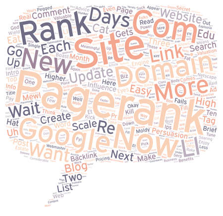 How To Get A Pagerank In Days text background wordcloud concept