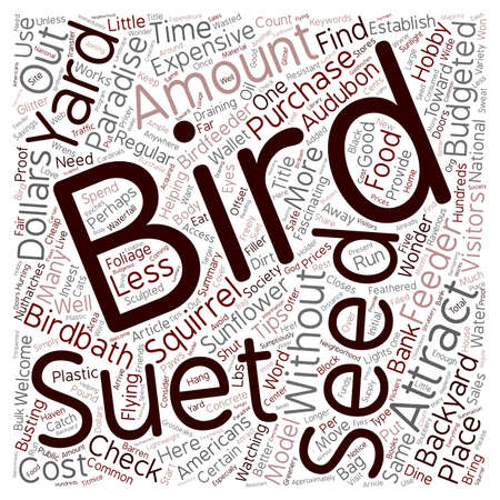 backyard: How to Attract Birds to Your Backyard Paradise For Less Than 100 text background wordcloud concept
