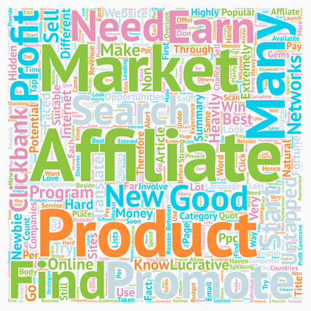 newbie: How Earn Money From Untapped Affiliate Markets text background wordcloud concept