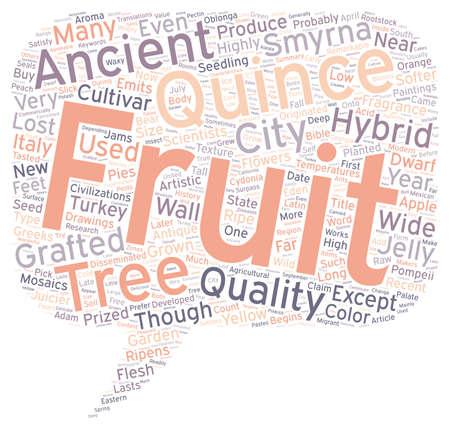 membrillo: Historia de los Quince el texto Concepto de fondo wordcloud