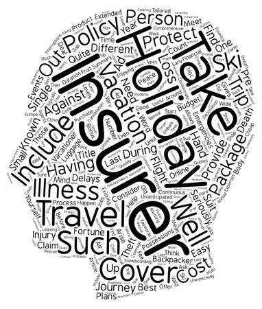 holiday budget: Holiday Insurance text background wordcloud concept