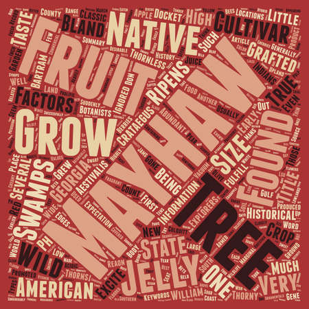 docket: History Of The Mayhaw text background wordcloud concept