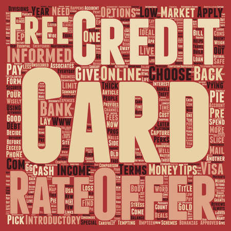 vying: Essential tips on how to get a credit card text background wordcloud concept