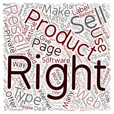 make summary: How To Make Money With Resell Rights text background wordcloud concept Illustration