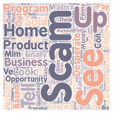 based: How To Tell If A Home Based Business Is A Scam text background wordcloud concept