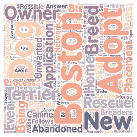 rescue dog: boston dog rescue terrier text background wordcloud concept Illustration