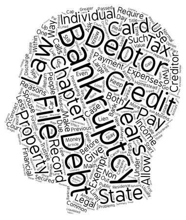 13: Bankruptcy Chapter Or Chapter text background wordcloud concept