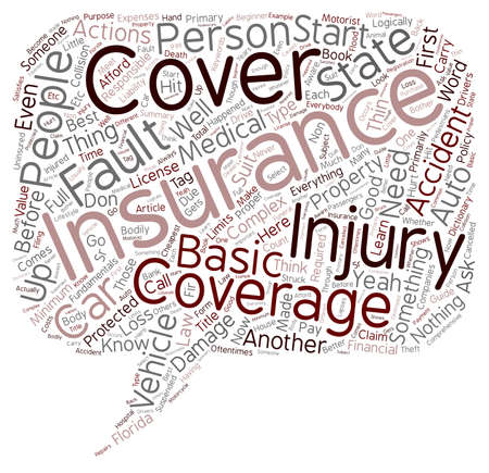 beginner: Beginner s Guide To Auto Insurance text background wordcloud concept