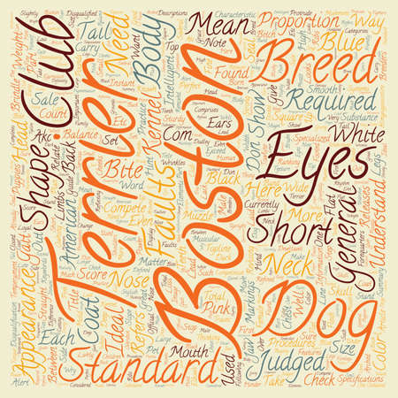 boston terrier: Boston Terrier The Standard and Does it Matter text background wordcloud concept