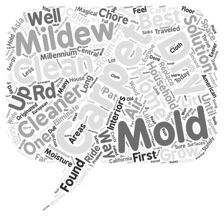 rd: Best Carpet Cleaners Advice Keep Dry Bid Molds Goodbye text background wordcloud concept