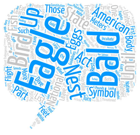 Birds The American Bald Eagle text background word cloud concept