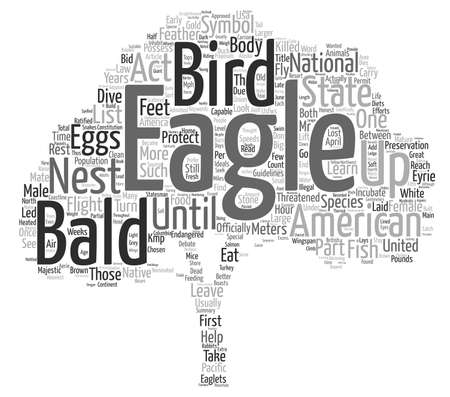 Birds The American Bald Eagle Word Cloud Concept Text Background