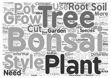 bonsai: Bonsai Trees Plants and Shops text background wordcloud concept Illustration