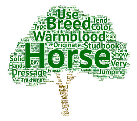 Horse Breeds Types of Warmbloods text background wordcloud concept Illustration