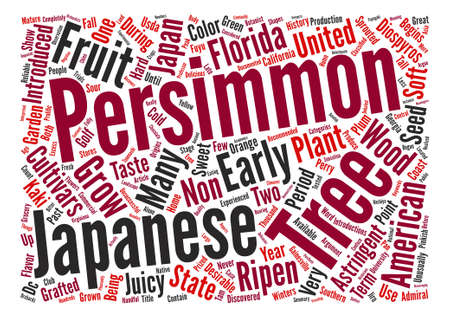 History Of Persimmons Diospyros Kaki L text background wordcloud concept