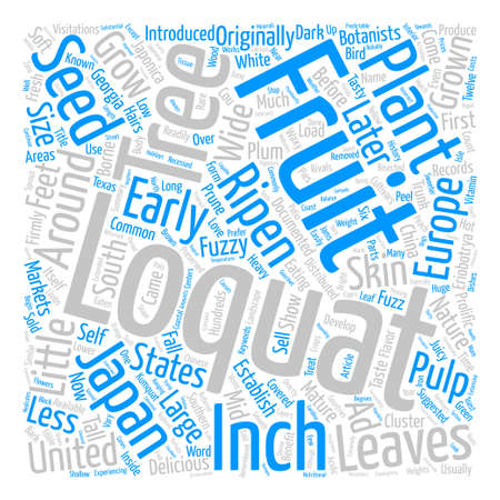 suggested: History Of The Loquat text background wordcloud concept Illustration