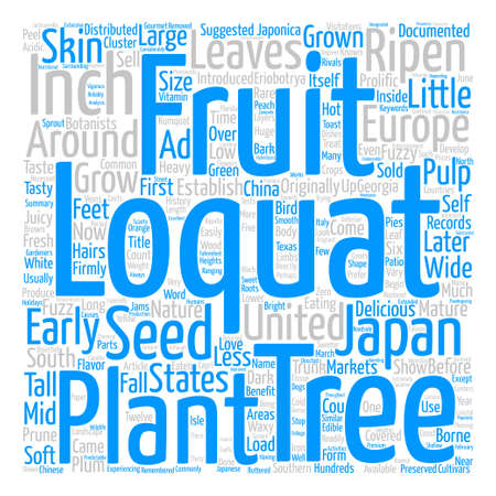 documented: History Of The Loquat Word Cloud Concept Text Background Illustration