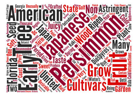 History Of Persimmons Diospyros Kaki L text background word cloud concept