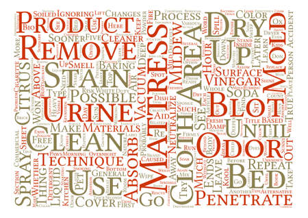 how to: How to Clean Mattress Stains text background word cloud concept