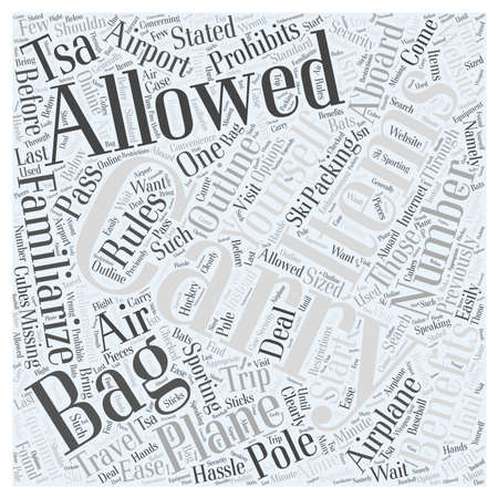 Air Travel What You Can and Cannot Carry on a Plane Word Cloud Concept
