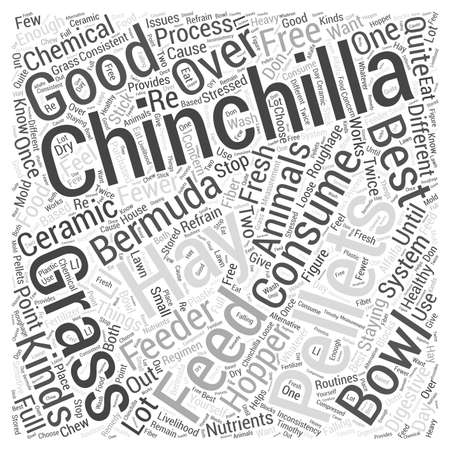 fewer: Chinchillas Staying Healthy With Pellets and Hay Word Cloud Concept